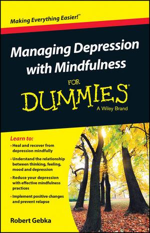 Mindfulness Book R Gebka