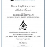 Accredited Professional Mindfulness Practitioner Certificate